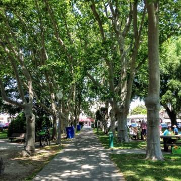 sonoma park