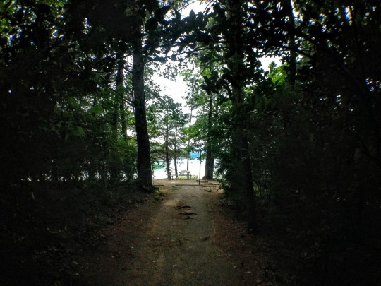 The campsite in Georgia was so sweet. This was the little path to my sandy lakeside spot.